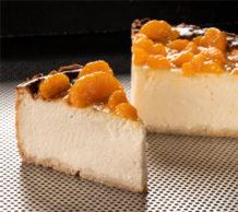 Quarkmix für Quark- und Käsekuchen vom Hersteller Teltomalz